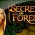 игровой автомат secret forest